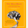 Louann Brizendine, M.D. - The Male Brain: A Breakthrough Understanding of How Men and Boys Think (Unabridged)  artwork