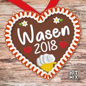 Wasen 2018