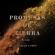 Javier Limón - Promesas De Tierra