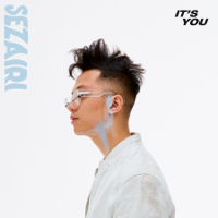It's You Mp3 Songs Download