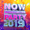 Various Artists - NOW That's What I Call a Party 2019 artwork