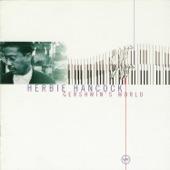 Herbie Hancock - The Man I Love