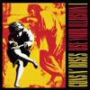 Guns N' Roses - Use Your Illusion I kunstwerk