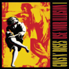 Guns N' Roses - Use Your Illusion I artwork