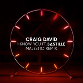 I Know You (Majestic Remix) [feat. Bastille] - Single