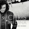 Chris Medina - What Are Words bild