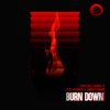 Structure & Double-U - Burn Down (feat. HB Monte & Emmaly Brown) [Radio Edit] artwork