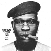 Seun Kuti & Egypt 80 - Last Revolutionary