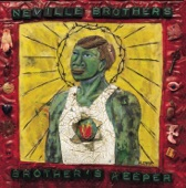 The Neville Brothers - Brother Jake