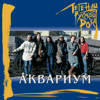 Легенды русского рока: Аквариум - Akvarium