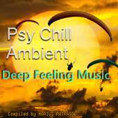 Psy Chill Ambient Deep Feeling Music (Compiled and Mixed by Marius Patrascu)