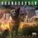Soundgarden Black Hole Sun - Soundgarden