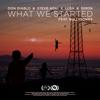 Don Diablo, Steve Aoki & Lush & Simon - What We Started (feat. BullySongs) artwork