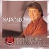 napoleon - leña verde