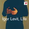 Igor Levit - Life Grafik
