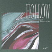 Hollow (feat. Charlie Lim)