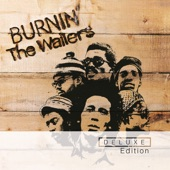The Wailers - I Shot the Sheriff