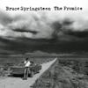 Bruce Springsteen - Fire bild