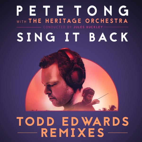 Sing It Back (feat. Becky Hill) [Todd Edwards Remixes] - Single