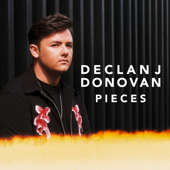 Pieces Declan J Donovan