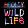 Hedley - Anything artwork