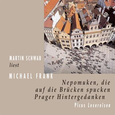 Nepomuken, die auf die Brücken spucken - Michael Frank