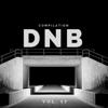 DnB Music Compilation, Vol. 17 - Various Artists
