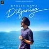 Diljaniya Single