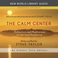 Steve Taylor - The Calm Center: Reflections and Meditations for Spiritual Awakening artwork