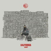 Calpurnia - City Boy