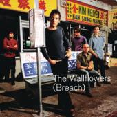 Sleepwalker - The Wallflowers