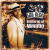 Mambo No. 5 (A Little Bit of...) - Lou Bega Cover Art