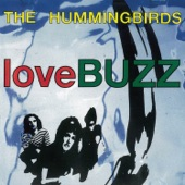 The Hummingbirds - Blush