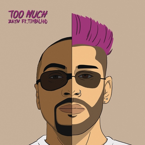 Too Much (feat. Timbaland) - ZAYN song image