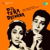 Dil Tera Deewana Original Motion Picture Soundtrack