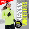 Aerobic Winter Hits: 2019 Workout Session - Various Artists