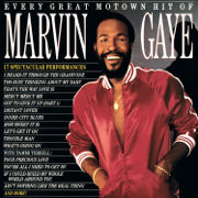 Mercy Mercy Me (The Ecology) - Marvin Gaye - Marvin Gaye