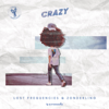 Lost Frequencies & Zonderling - Crazy portada