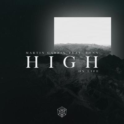 High on Life (feat. Bonn) - Martin Garrix song