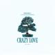 Future Animals - Crazy Love MP3