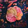 Random Recipe - Anxt artwork