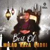 Best of Milad Raza Qadri
