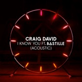 I Know You (feat. Bastille) [Acoustic] - Single
