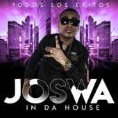 Baila el Tra (Remix) [feat. Don Chezina] - Joswa In Da House
