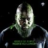 Ngeke Ku Lunge (feat. Xelimpilo) - Noxious DJ