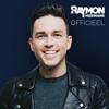 Raymon Hermans - Officieel kunstwerk