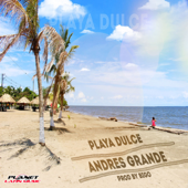 Playa Dulce (feat. Mr. Jeyko)