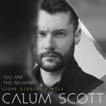 You Are the Reason (John Gibbons Remix) - Single