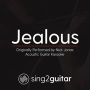 Jealous (Originally Performed by Nick Jonas) [Acoustic Guitar Karaoke] - Sing2Guitar - Sing2Guitar