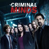 Criminal Minds, Season 13